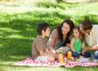 family on a picnic together